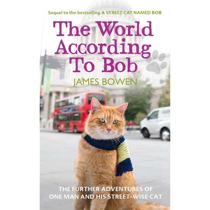 Bob The Cat Book