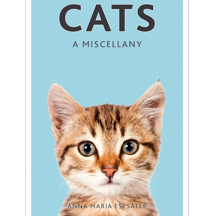Cats Miscellany