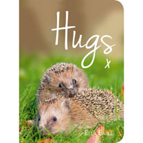 Book - Hugs