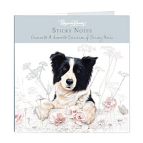 Sticky Notes - Border Collie