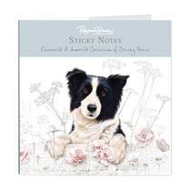 Sticky Notes - Border Collie
