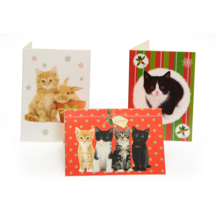 Cat Value Tags
