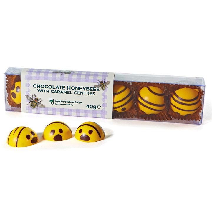 Chocolate Bees / Chocolate Ladybirds