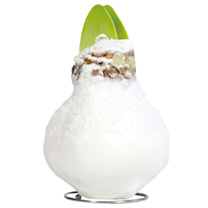 Amaryllis Wax Bulb - White/snow coating