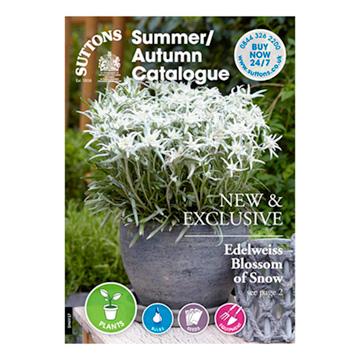 Suttons Summer/Autumn Catalogue