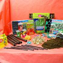 Garden Bargain Pack
