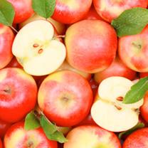 Fruit Me Tree - Apple Me