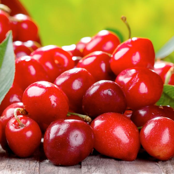 Summer Trees Fruit Fruit me Tree Cherry me