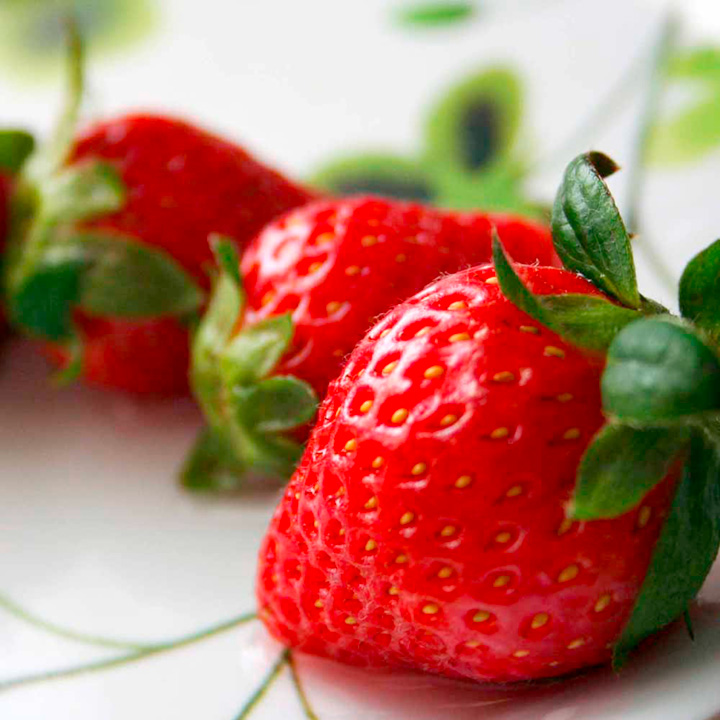 Plants & Plant Care Strawberry, Framberry and Pineberry Collection