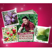 James Wong Collection Offer + Book