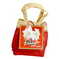 Amaryllis Santa Bag - White