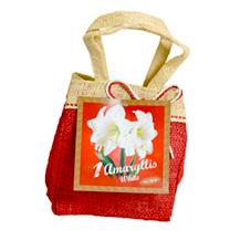Amaryllis Santa Bag - White