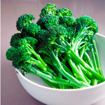 Broccoli (Sprouting) Plants - F1 Bellaverde® Sibsey