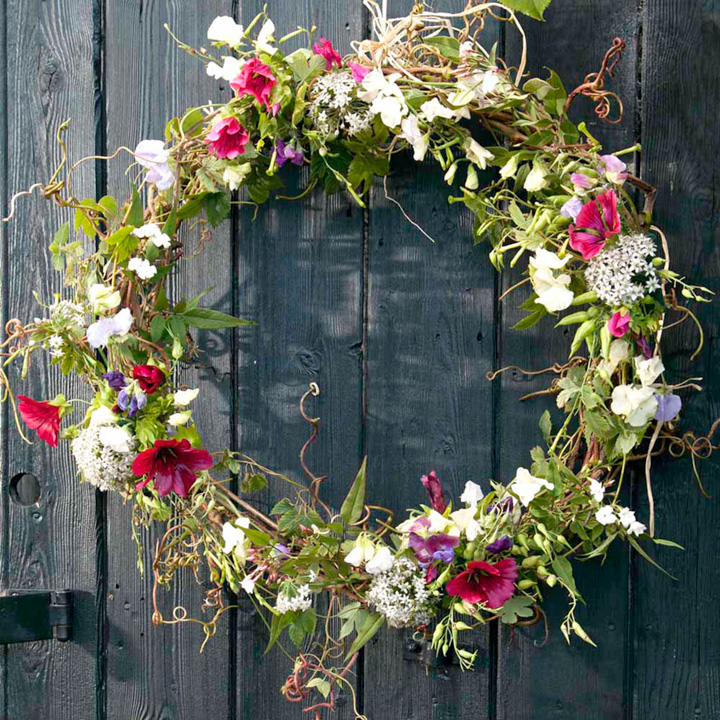 Cut Flower Seeds - Spring/Summer Wreath
