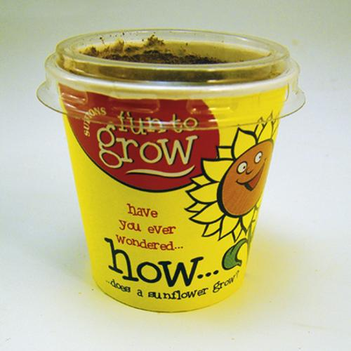 Sunflower Growing Kit for Kids
