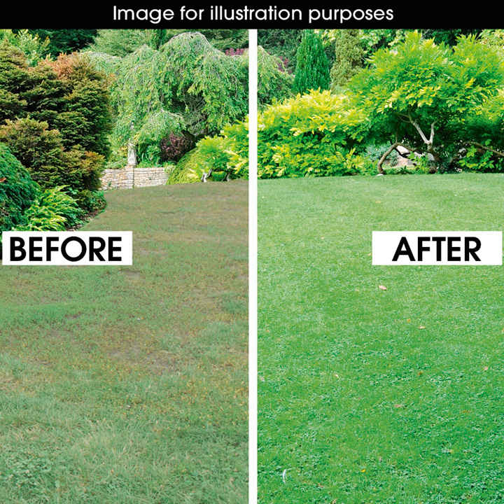 Luxury Lawn Seed 20kgs View All Lawn Care Lawn Care