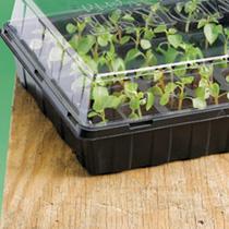 Sow & Grow 72 Plug Propagator & Compost
