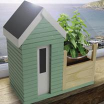 Beach Hut Allotment Planter