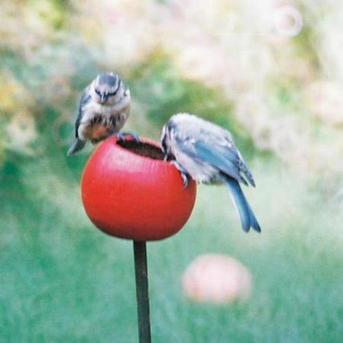 Flowerbed Bird Feeders