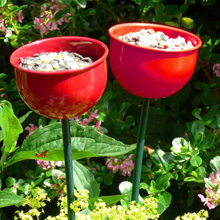 Cup Bird Feeders