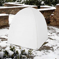 Frost Cloche - Large