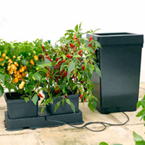 Easy 2 Grow Irrigation Kit and Extension Kit