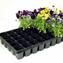 Pack of 4 Square Cell Growing Trays