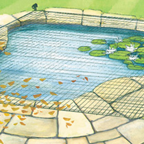 Pond and Plant Protection Net