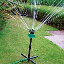 Oasis Indoor Self Watering System - Bluestone Garden