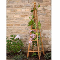 Wooden Obelisk