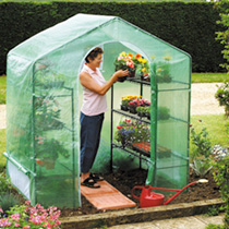 Plant House with integral staging