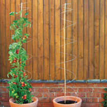 'Twisters' Plant Supports
