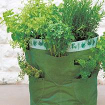 Herb Kit & Planters