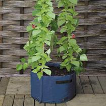 Patio Planter Offer