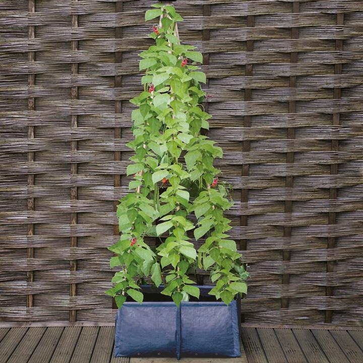 Six Cane Patio Planters - Buy 2 SAVE £3.00