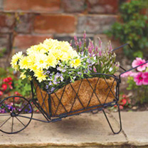 A traditional wheelbarrow planter designed to brighten up any garden or patio. Sturdily constructed from metal with a coco liner, it can be assembled