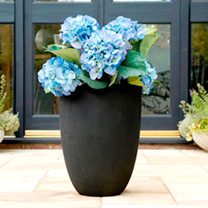 Tutch Planter - Black Vase-shaped