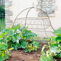 Ornamental Plant Frame - Square