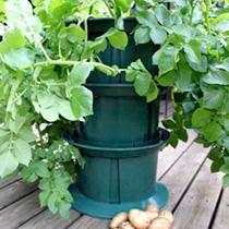 Stacking Potato Planter