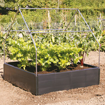 Raised Bed Canopy Support