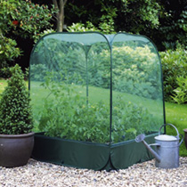 Net Cover and Raised Bed
