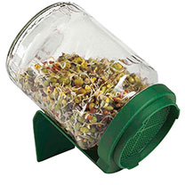Germinator Jar + 2 FREE packets of seed