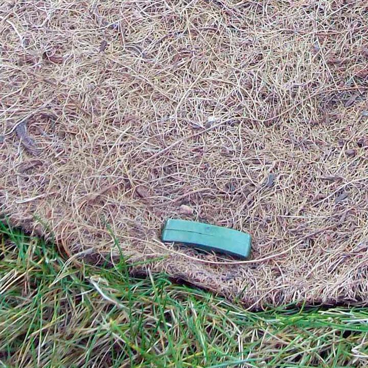 Biodegradable Staples - Biofilia