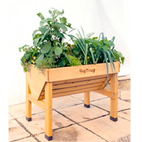 VegTrug 1m Plus FREE seeds & Accessories