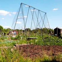 Easy Vegetable Grow Frame - 2.4 x 2.4m
