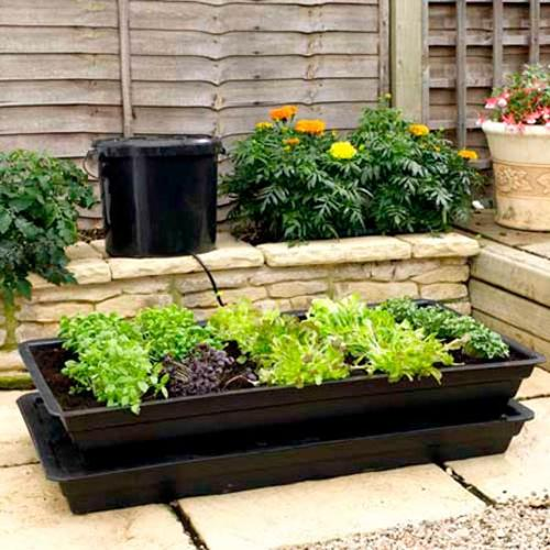 Vitogrow Self-watering Mini Garden