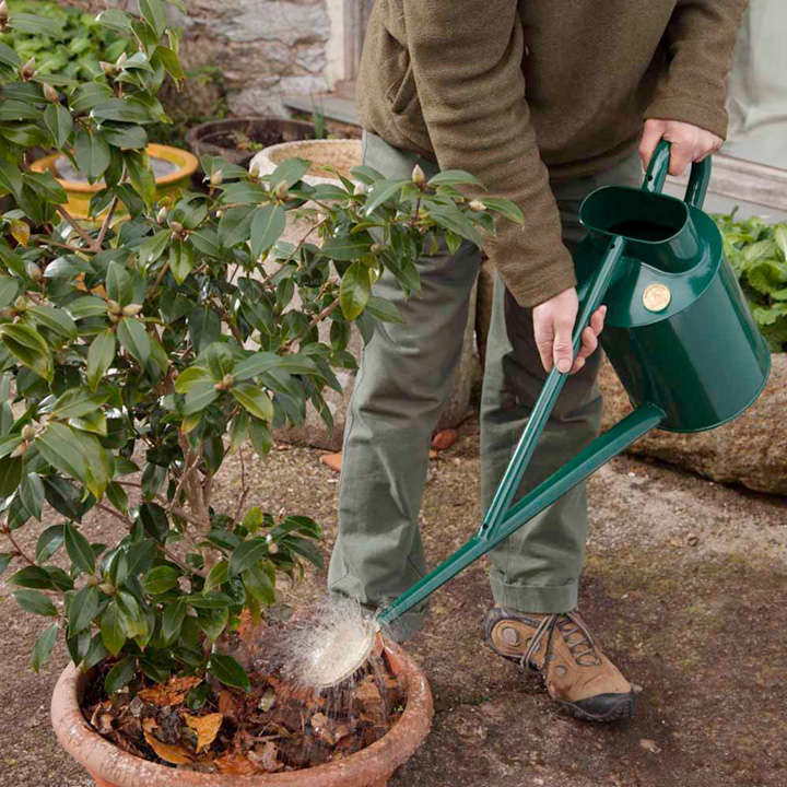 Haws professional long reach watering can for Indoor gardening machine