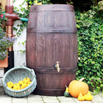 If you want to save rainwater but are put off by the look of water butts then this could be the answer! This high capacity model boasts an astoundingl