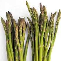 Asparagus Plants - F1 Ariane