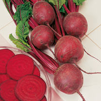Beetroot Seeds - F1 Pablo